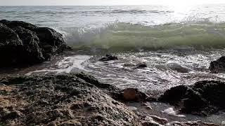 Не забываем, что есть Красота вокруг нас! Чёрное Море 2020 года.