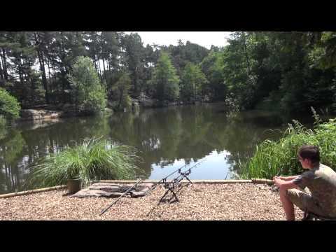 RUSHMOOR LAKE FISHERIES, RUSHMOOR, SURREY
