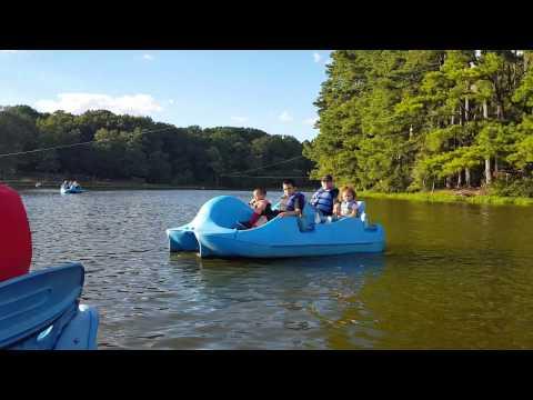 Shelby farms boat