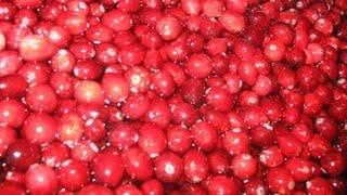 Fresh Homemade  Cranberry Sauce    Marjorie's