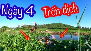 Trốn Dịch Tìm Thức Ăn Ngoài Đồng Ngày Thứ 4   Son Duoc Vlogs