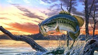Ю тв рыбалка 9 выпуск