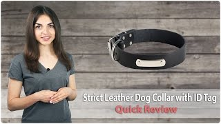 Leather Dog Collar with ID Tag - Strict Confidence - Quick Review