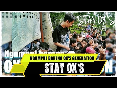 Ngumpul Bareng Ox's Generation ( Stay Ox's ) #eps1