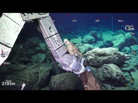 ROV SuBastian Dive 104- Mata Taha- Underwater Fire