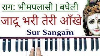 जादू भरी तेरी आँखें जिधर गई I Sur Sangam Harmonium I Raag Bhimplasi I Bandish