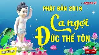 Mừng Lễ Phật Đản 2019 - Nhạc Phật Giáo Chọn Lọc DỄ NGHE DỄ NGỦ