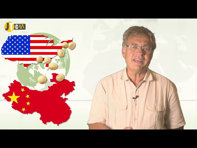 JTCM - Maïs : des récoltes records aux USA !