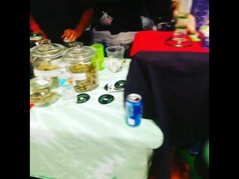 Grandma Greenz at the High Life Music Festival 2016