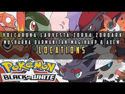 Pokemon Black & White - All Special Pokemon Locations