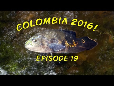 Colombia 2016! - Episode 19 - The Last Day