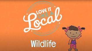 Lileina Joy: LOVE IT LIKE A LOCAL (Wildlife)