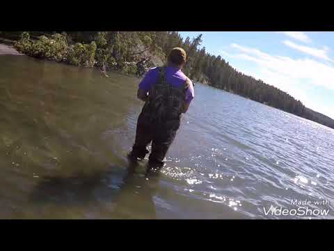 Yellowstone vacation day 1: catching cut throat trout in Yellowstone lake