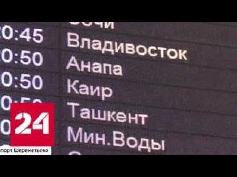 """""""Вести"""" проводили первый за два с половиной года рейс в Египет - Россия 24"""
