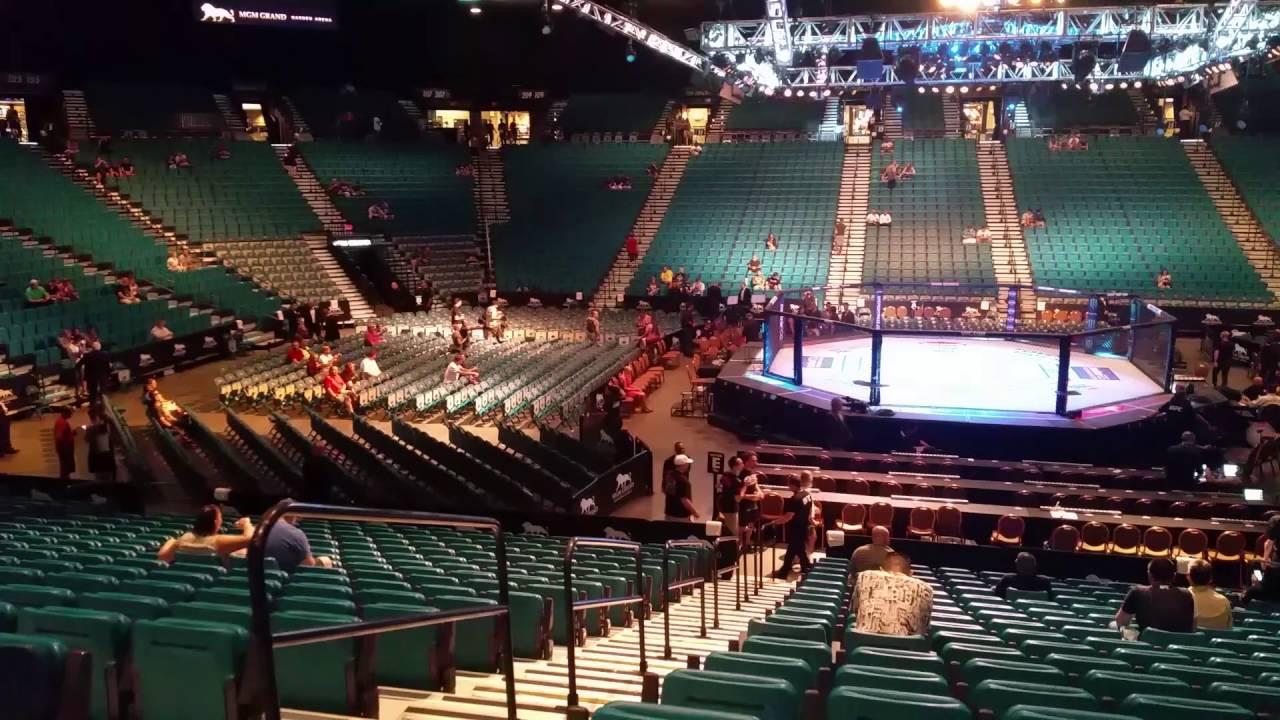 Mgm Grand Arena