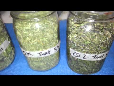 How To Make Cannabis Tincture Vegetable Glycerin