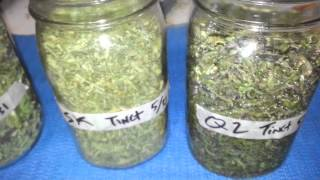 How to make cannabis tincture (vegetable glycerin)