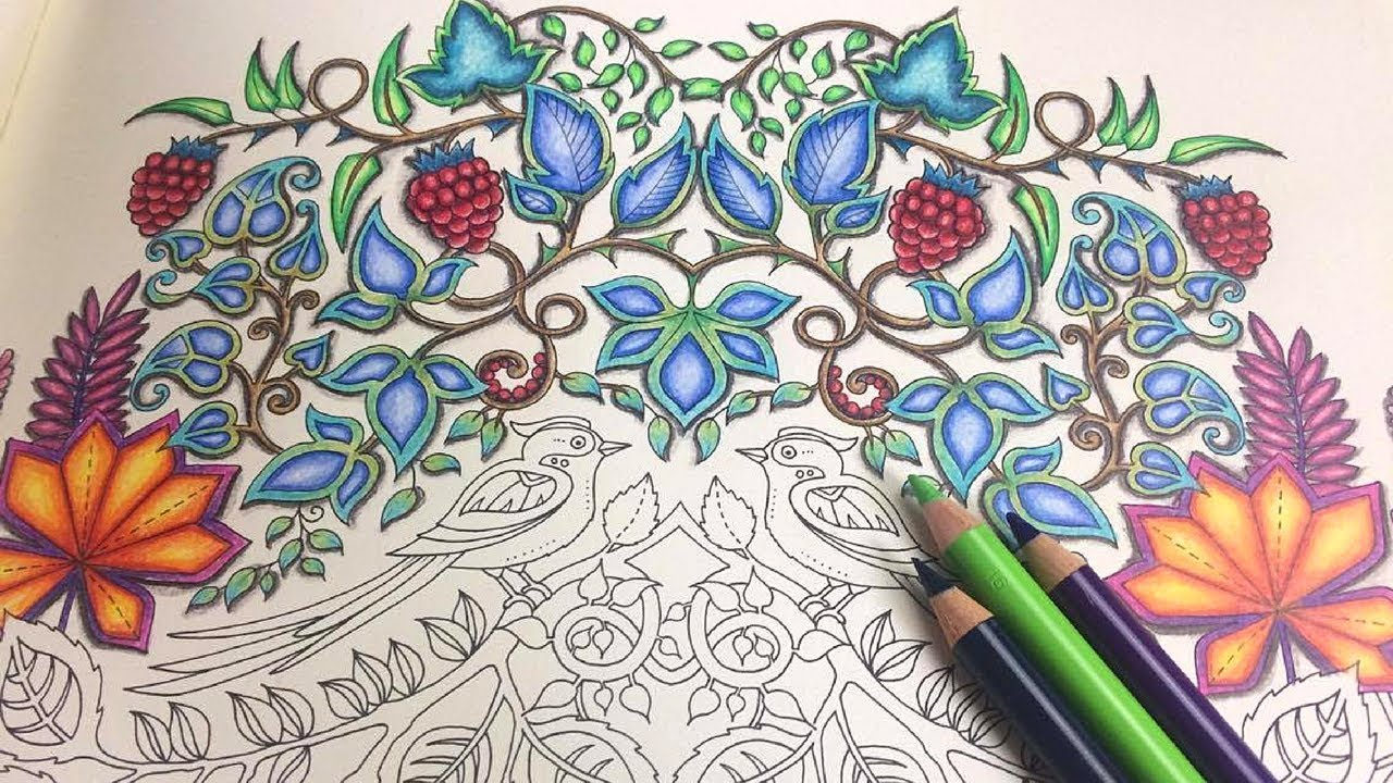 ENCHANTED FOREST COLOUR ALONG PART 1 FABER CASTELL POLYCHROMOS