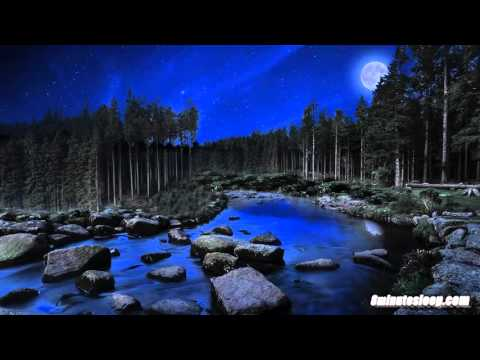 Bubbling Stream At Night Water Sounds White Noise | Crickets & Nature | Sleep, Study