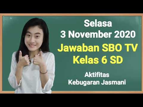 Kunci Jawaban SBO TV Kelas 6 SD Selasa 3…