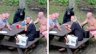 Family Enjoy Picnic With Wild Bear