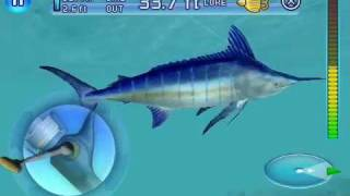 Fishing Kings (iPhone Game) - Catching a Blue Marlin (Final Boss)