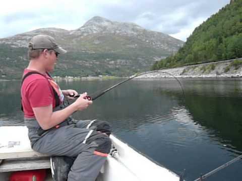 kabeljauw noorwegen 106cm