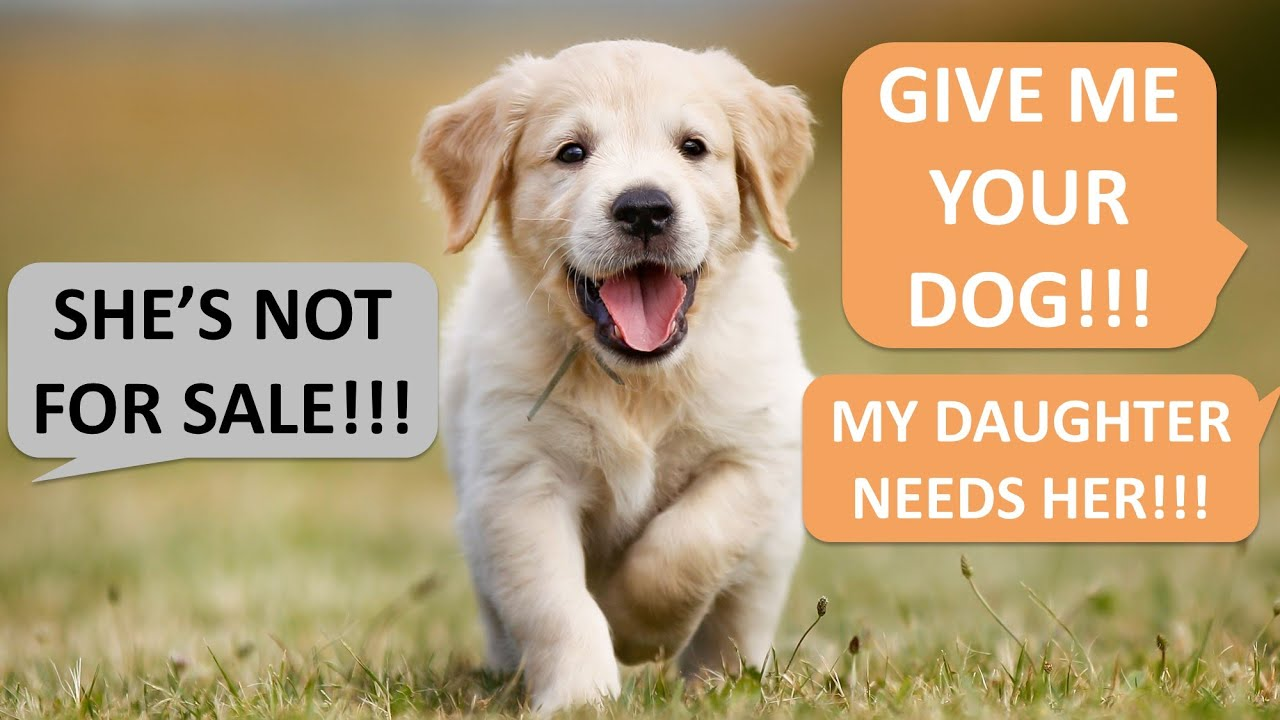 Entitled Mom wants my dog because her daughter needs her...?!?! No my dog is not for SALE!