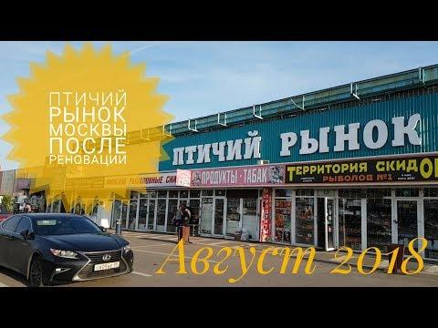 Птичий рынок Москвы летом 2018 (после реновации)