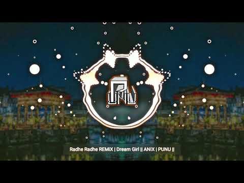 Radhe Radhe Remix  Dream Girl  Anix  Punu