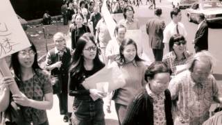 BEYOND ACTIVISM: FOUR DECADES OF SOCIAL JUSTICE (HD)