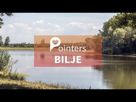 Bilje — Croatia | DRONE FOOTAGE | Pointers Travel