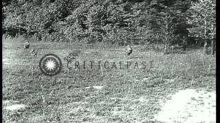 318th Infantry Regiment, 80th Division, American Expeditionary Force troops advan...HD Stock Footage