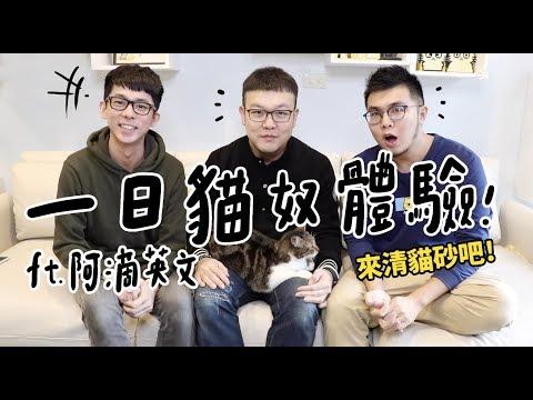 【黃阿瑪的後宮生活】一日貓奴體驗!ft.阿滴英文