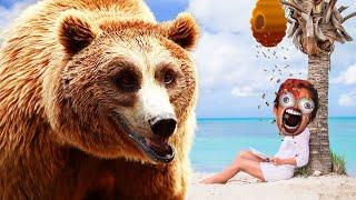 bears... | RAFT