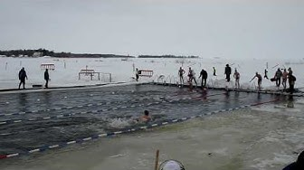 Ice swimming Finnish championships 2010 mixed relay breaststroke