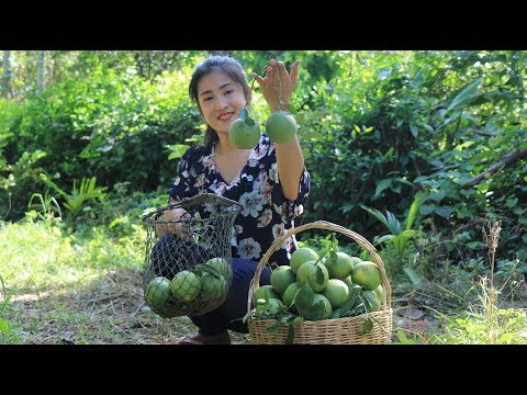Have You Ever Made Orange Juice By Yourself - Healthy & Fresh Orange Juice - By Countryside Life TV