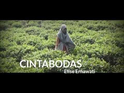 CINTABODAS (Elise)