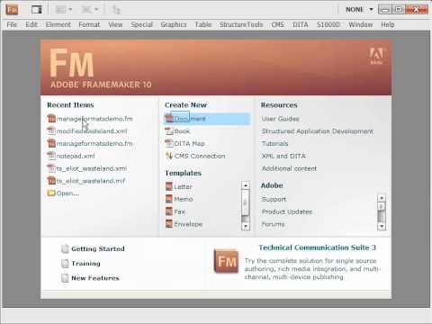 Manage FrameMaker formats better using paragraph or character catalog