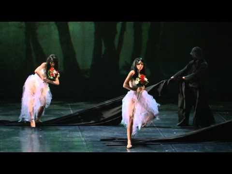 Ballet David Campos - Giselle