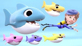 Baby Shark Song | 3D Rhymes Animal Songs | Learn English Kids