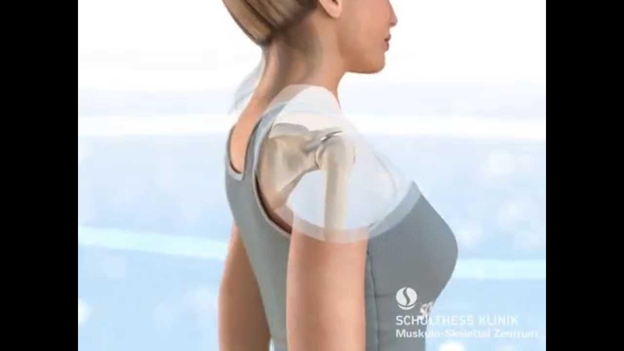 Die Anatomie der Schulter - YouTube
