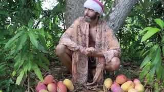 Guru Speaks #16: Fruits of Life