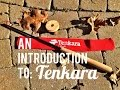 An Introduction To: Tenkara