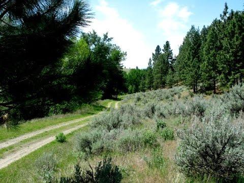 3360 Quiet PL Stevensville, Montana 59870 MLS# 58978