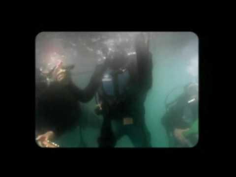 Los Tipitos - Algo (video oficial)