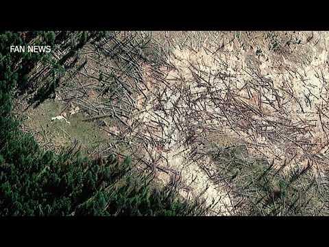Йеллоустонский супер вулкан расширяется и уничтожает все деревья в парке!