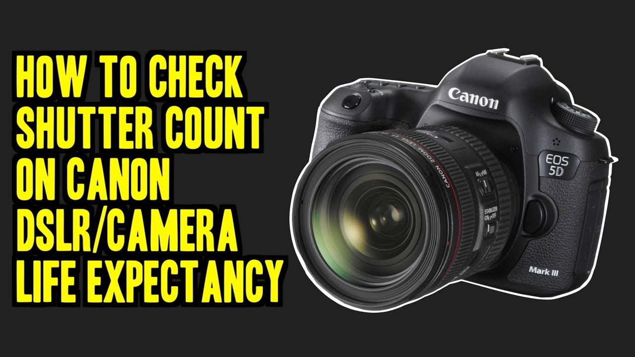HOW TO CHECK SHUTTER COUNT ON CANON DSLRs/DSLRs LIFE EXPECTANCY (MAC/WINDOW)