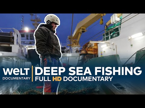 DEEP SEA FISHING - Hard Work On The High Seas | Full Documentary