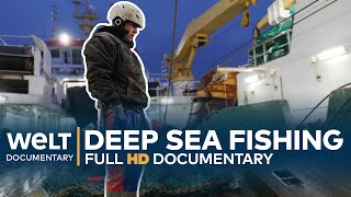 DEEP SEA FISHING - Hard Work On The High Seas | Full Documentary